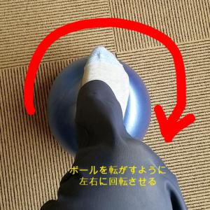 mojimaru_1527035016